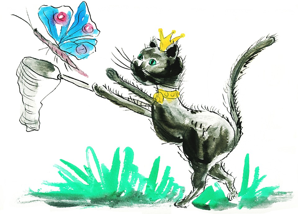 festa-internazionale-del-gatto